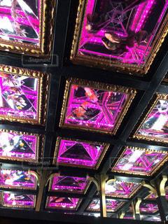 天井に金魚の写真・画像素材[1474194]