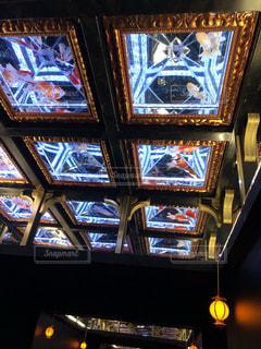 天井に金魚の写真・画像素材[1474197]