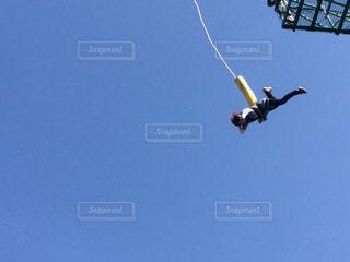 青い空を飛ぶの写真・画像素材[1460791]