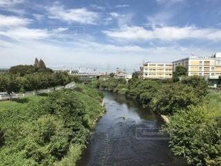 神奈川県ののどかな風景の写真・画像素材[1459759]
