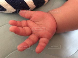 赤ちゃんの手の写真・画像素材[1459737]