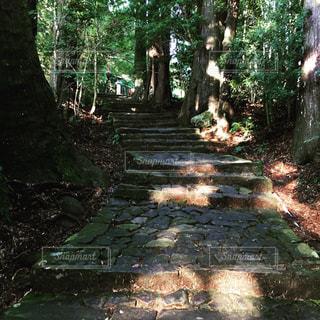 古道を歩くの写真・画像素材[1461411]