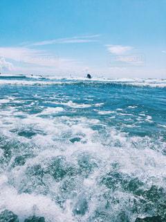 海を楽しむの写真・画像素材[1463731]
