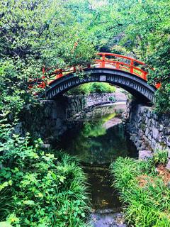 日本庭園の写真・画像素材[1463733]