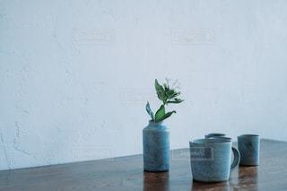 観葉植物のあるテーブルの写真・画像素材[2398110]