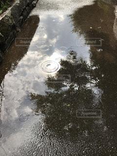 雨上がり、空を写す水たまりの写真・画像素材[1464838]
