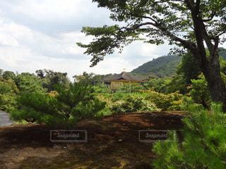 金閣寺の写真・画像素材[1588302]