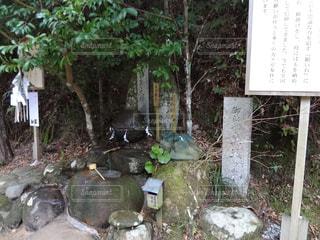 願い石の写真・画像素材[1592601]