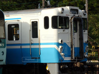 JR四国の車両の写真・画像素材[1562949]