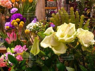 徳島 イオンモールの花屋さんでの写真・画像素材[1773871]