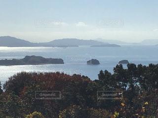 牛窓オリーブ園から瀬戸内海を望む(1)の写真・画像素材[2807485]