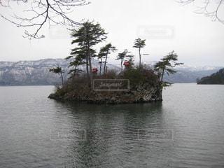 十和田湖の小島の写真・画像素材[1506465]