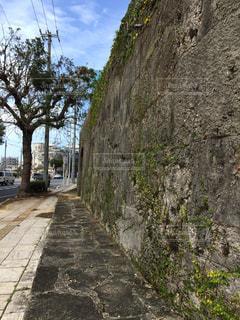 石の道の写真・画像素材[1516597]
