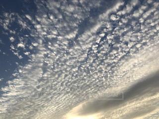 空には雲のグループの写真・画像素材[1479707]