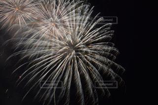 空に花火の写真・画像素材[1470774]