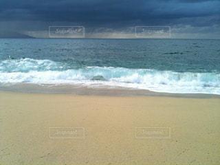 屋久島 永田いなか浜の写真・画像素材[1479388]