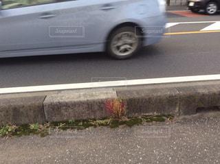 道の端に駐車していた車の写真・画像素材[1619593]