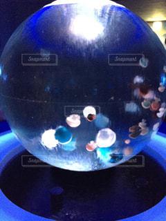 青いボールとガラスの写真・画像素材[1472958]