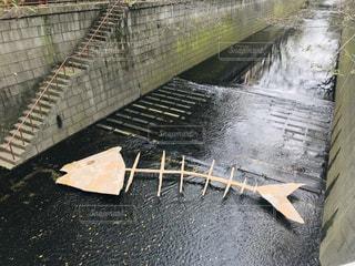 目黒川に出現していた魚の骨のアート作品の写真・画像素材[1528279]