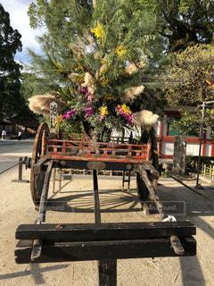 山車の上の生け花の写真・画像素材[1478059]