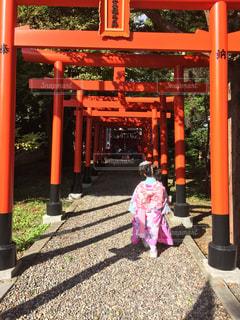 鳥居の前に立っている女の子の写真・画像素材[1521750]