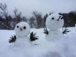 雪だるまの写真・画像素材[1547353]