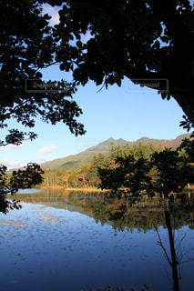 知床五湖、水鏡の写真・画像素材[1587969]