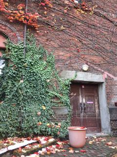 れんが造りの建物の前に木の写真・画像素材[1637111]