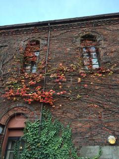 近くにれんが造りの建物の写真・画像素材[1637138]