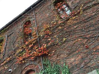 近くにれんが造りの建物の写真・画像素材[1637139]