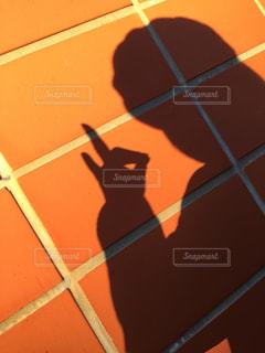 女性と狐の影の写真・画像素材[1637202]
