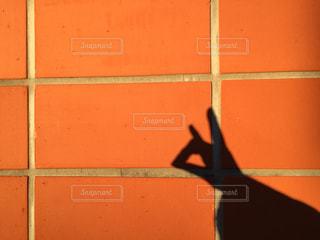 手の狐の影の写真・画像素材[1637208]