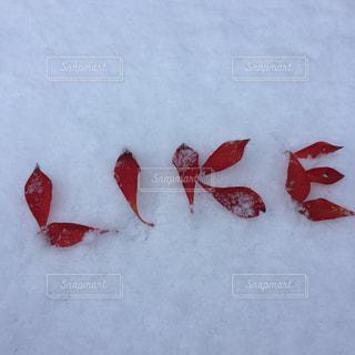 雪にLIKEの文字の写真・画像素材[1671699]