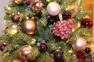 近くにクリスマス ツリーのアップの写真・画像素材[1691448]