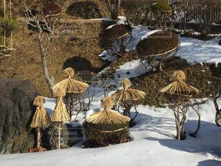 冬支度の写真・画像素材[1743642]