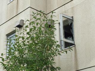 レンガ造りの建物の花瓶の写真・画像素材[2468332]