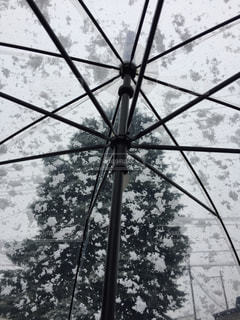 大きな傘の眺めの写真・画像素材[2792315]