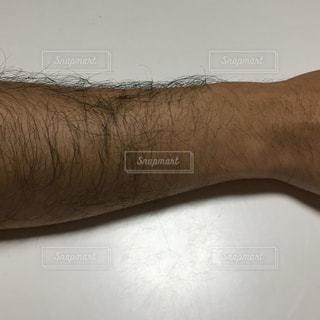 男性の腕の写真・画像素材[2835452]