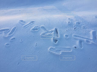 雪の模様の写真・画像素材[3218646]