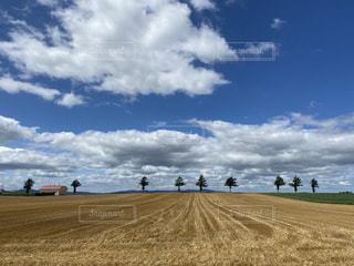 空に雲のある畑の人々のグループ メルヘンの丘の写真・画像素材[3550519]