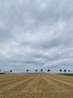 空の雲の群の写真・画像素材[3595771]