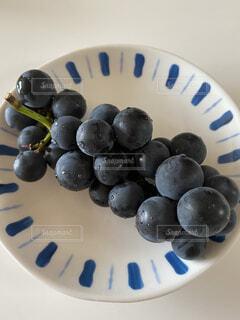 皿の上の食べ物の写真・画像素材[3778909]