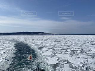 砕氷船おーろらからみる流氷の写真・画像素材[4206616]