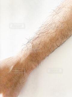 男性の腕の写真・画像素材[4370666]