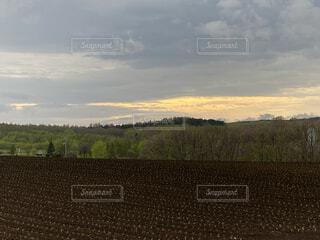広い畑の写真・画像素材[4433775]