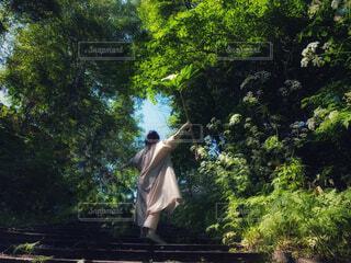 緑の中で大きな葉を持つ女性の写真・画像素材[4539576]