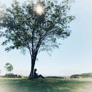 キャンプサイトの大きな生地の下で休憩している人の写真・画像素材[4596298]