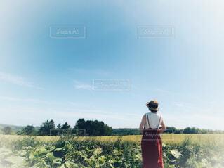 北海道の自然の中に立つ赤いワンピースの女性の写真・画像素材[4643655]