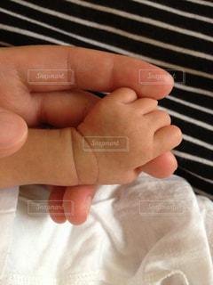 お母さんの指を握る赤ちゃんの手の写真・画像素材[1491329]