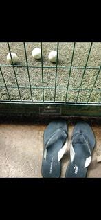 近くにいくつかの靴のアップの写真・画像素材[1877424]